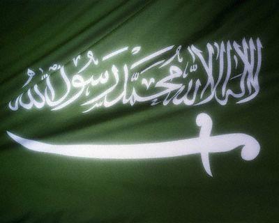 Name:  201102281_saudiflag.jpg Hits: 491 Größe:  21,3 KB