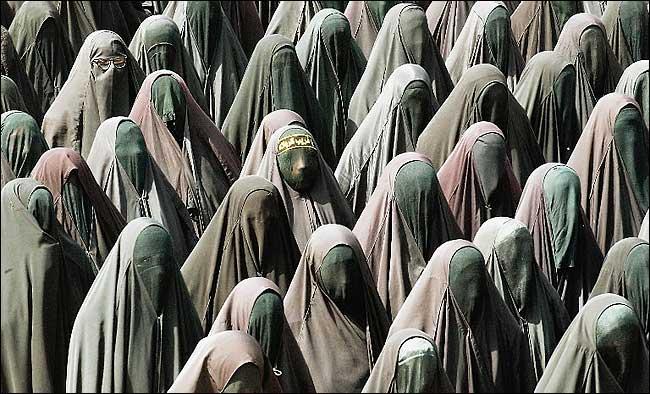 Name:  burka-menge.jpg Hits: 724 Größe:  61,2 KB