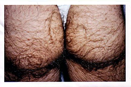 Name:  hairy-butt.jpg Hits: 80 Größe:  164,1 KB