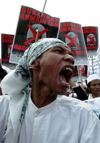 Name:  INDONESIA-Sharia_malvoluta.jpg Hits: 221 Größe:  46,5 KB